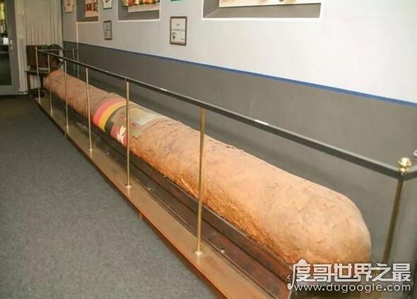 世界上最大的雪茄,中国长城雪茄创119米最长雪茄纪录